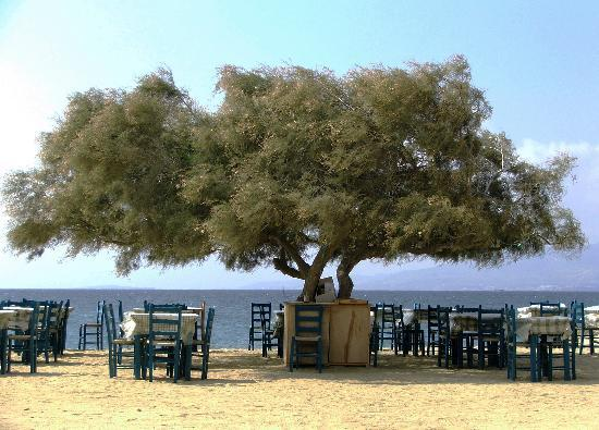 Naxos-Greece, Agia Anna beach