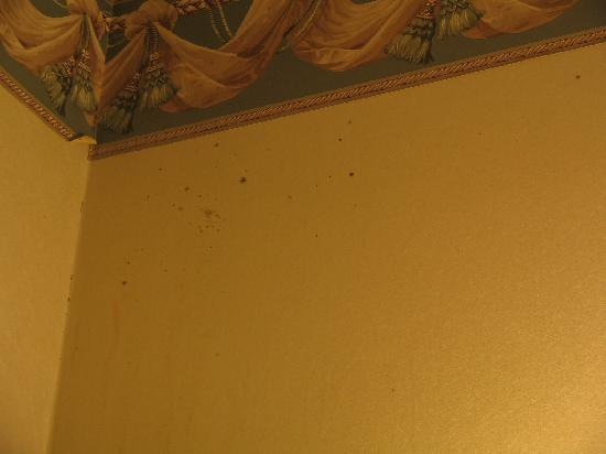 Budget Inn & Suites at the Falls - Niagara: Dead bugs on walls