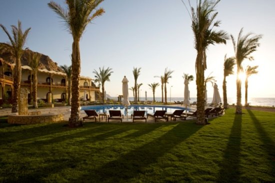  : Dahab Paradise Garden