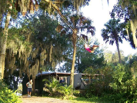 Welaka Lodge & Resort: Swinging