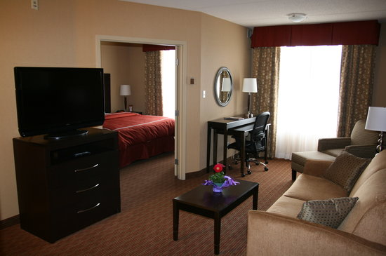 Comfort Suites Downtown Buffalo: Two room king suite livingroom area