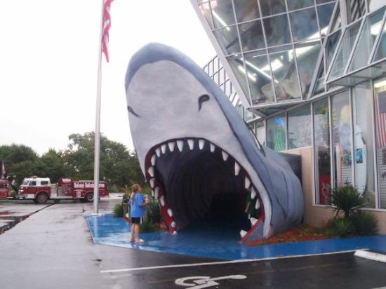 Myrtle Beach South Carolina Cool Gift Shop Picture Of