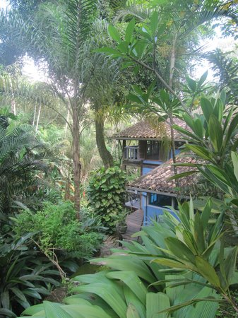 Na Mata Suites: toms and sylvias hideaway in their own little jungle