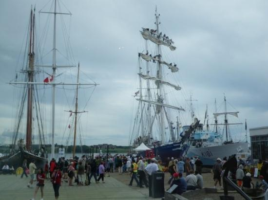 tall ships festival halifax harbor picture of halifax. Black Bedroom Furniture Sets. Home Design Ideas