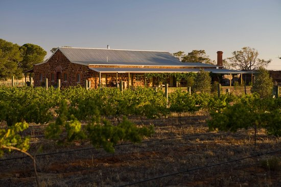 Hummocks Station: Set amongst a vineyard