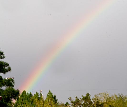 Nurturing Nest Mineral Hot Springs Retreat and Spa: Rainbow out my window at the Nest