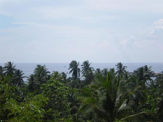 Thambapanni Retreat: Sea view from Superior room