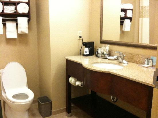 Hampton Inn & Suites Indianapolis-Airport: Bathroom