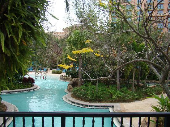 Pool picture of jw marriott orlando grande lakes for Pool show in orlando 2016