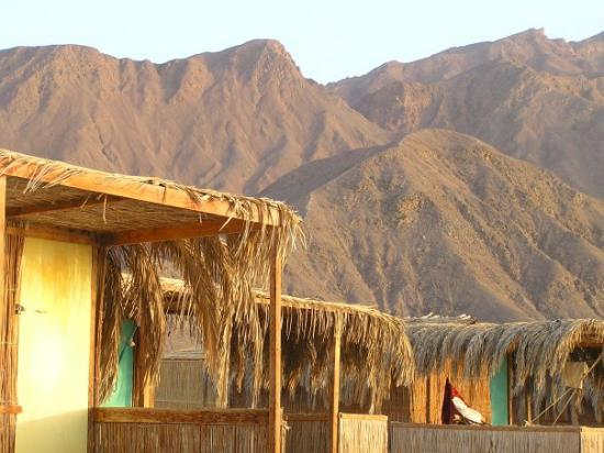 Nuweiba, Egypt: Looking over my hut towards the hills behind the camp - as I didnt climb Mt Sinai I had to do wi