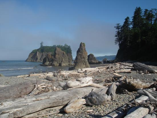 Kalaloch Campground: Nearby Ruby Beach