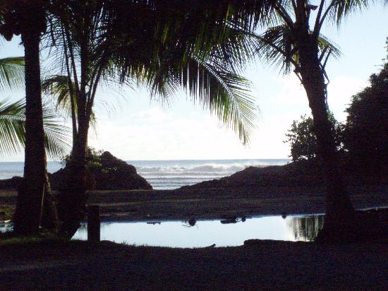 Roca Verde: My view of the beach from my seat at the restaurant.