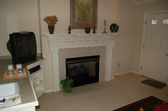 gas fireplace rating fireplaces