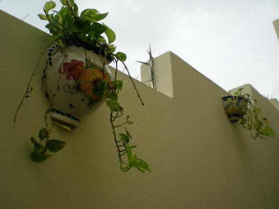 Images of Andalucia Guest House, San Juan - Guest house Pictures ...