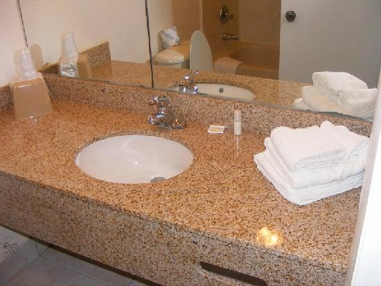 Fort Lauderdale Beach Palace Hotel &amp; Suites: At least the bathroom has granite counter tops