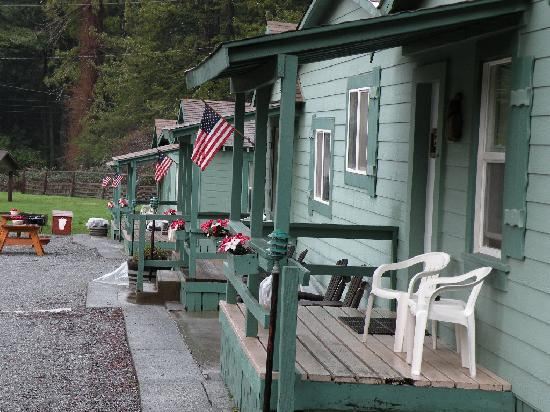 Redcrest, CA: Very cute and cozy