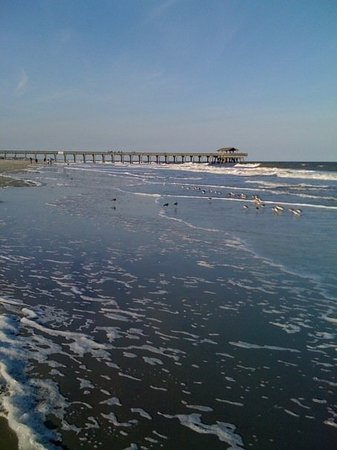 Tybee island