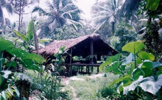 Sumatra, Indonesia: This is our first House we cooked fish we caught and headed deeper into the jungle
