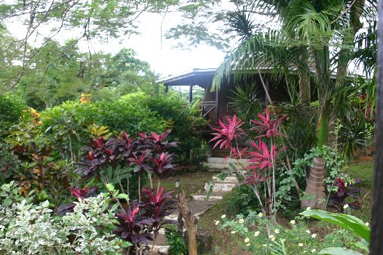 Marigot, Dominica: Bungalo and garden