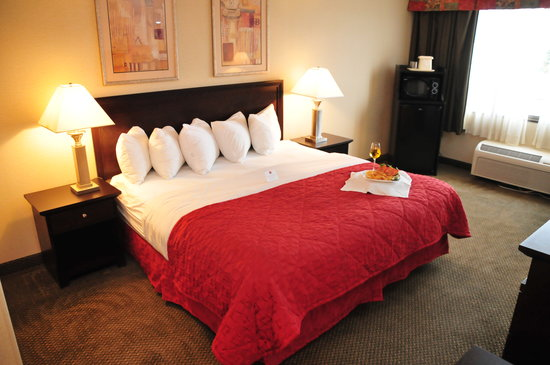 Ramada Plaza Albany: King Bedroom