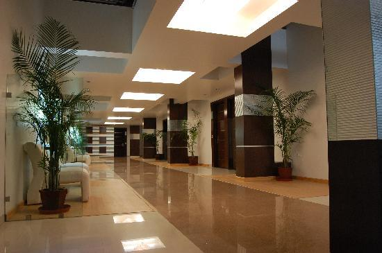 Hotel Sapphire Regency : Executive Room Lobby