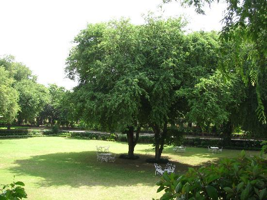 Samode Bagh: Lush Gardens