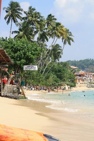 Thambapanni Retreat: The beach at Unawatuna