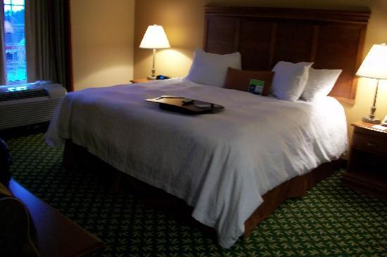 Hampton Inn &amp; Suites Hershey: king bedded suite