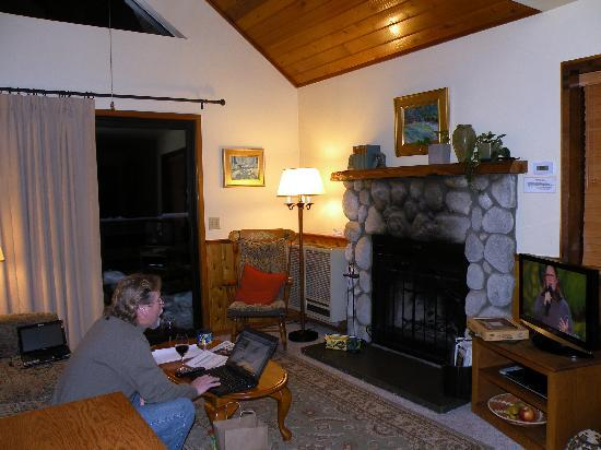 Idyllwild, : One-bedroom suite with free WiFi