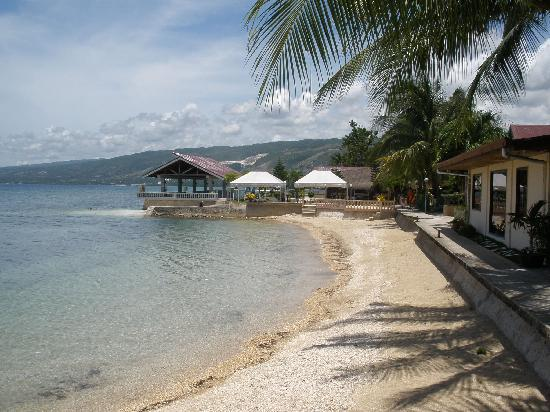 Ocean Bay Beach Resort: beach at the resort