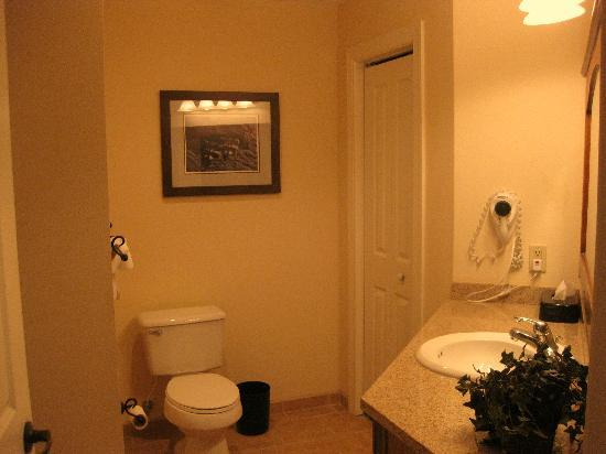 Smokey Mountain Resort: Bathroom of 1-Bedroom unit