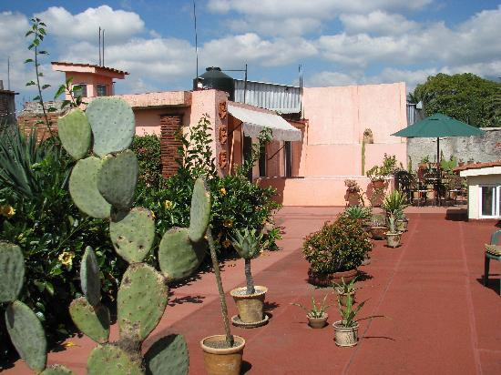 Bed & Breakfast at the Oaxaca Learning Center: Roof top terrace with apartment on the left