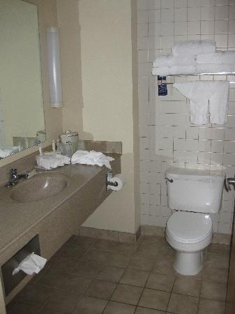 Holiday Inn Express Breezewood: Nice Clean Bathroom