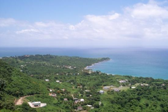 Humacao, Puerto Rico: View from Back yard