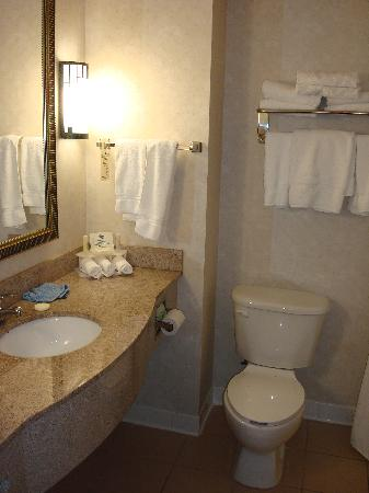Holiday Inn Express Hotel & Suites: Bathroom
