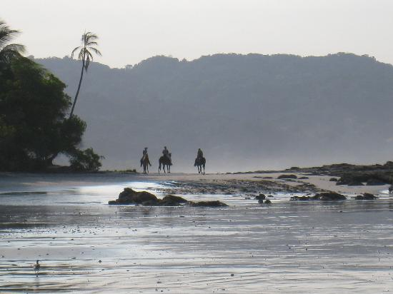 Santa Teresa, Costa Rica: horseback ride on beach