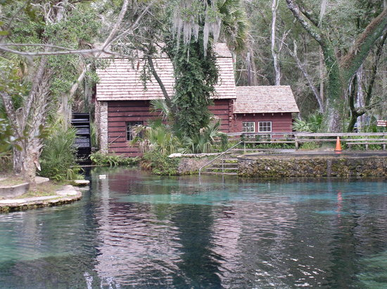 Juniper Springs Recreation Area: the spring