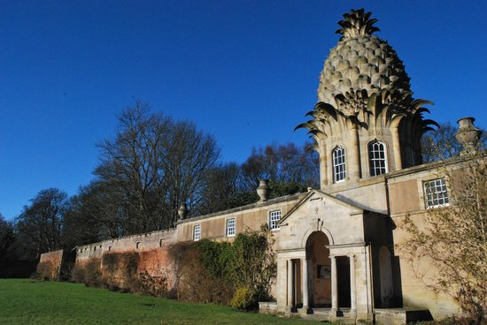 Photo of The Pineapple Falkirk