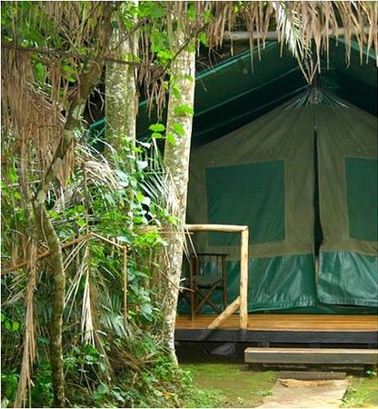 ‪Kibale Forest Camp‬