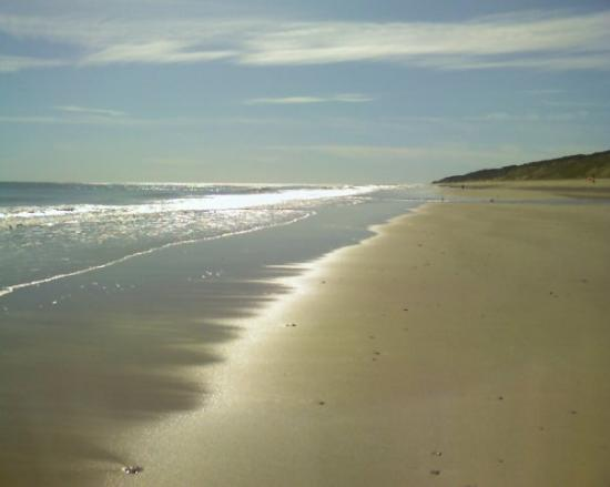 , : Provincetown  - late October 2009
