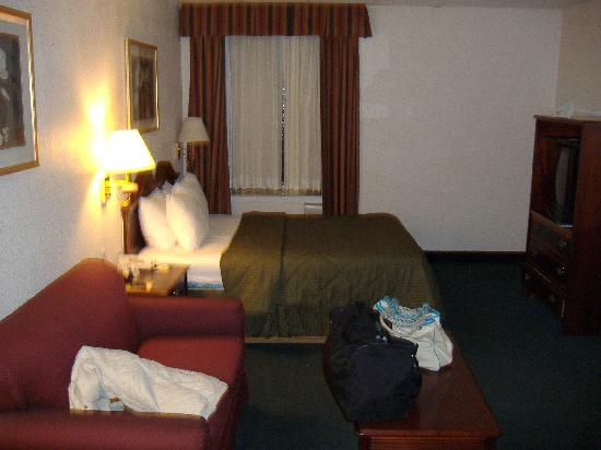 Comfort Inn & Suites Downtown: overall room