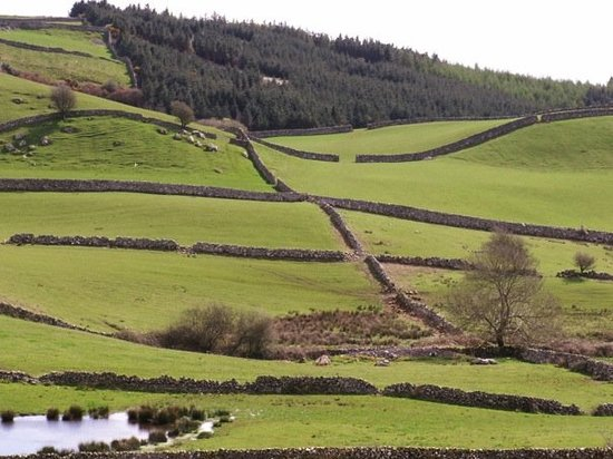 "Lace stone walls, on the way to Cong, ""The Quiet Man"" village of John Wayne fame"