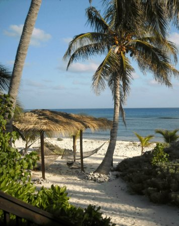 Photo of Pirates Point Resort Little Cayman