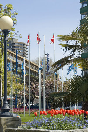 Photo of BEST WESTERN PLUS Sands Vancouver