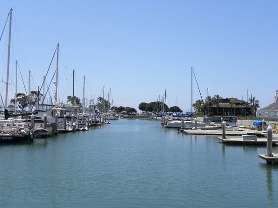 The top 10 things to do near the patriots boutique motel for Dana point harbor fishing