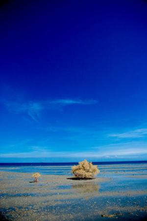 Сурабая, Индонезия: bangkalan Madura - a heaven on blue earth !  only 2 hours from Surabaya and you ll find this b