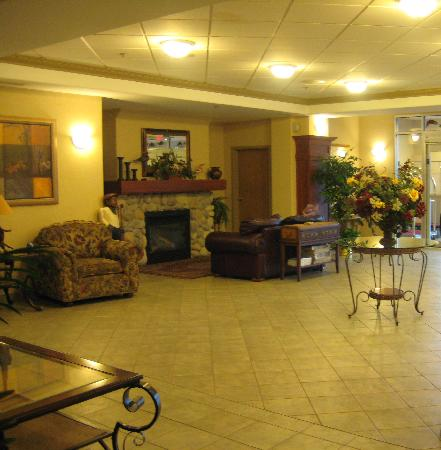 Comfort Inn & Suites: Lounge area in Reception