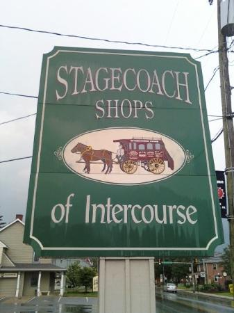 Intercourse Photo