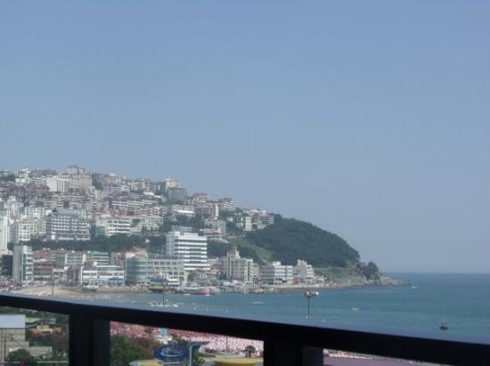 Bilde fra Busan