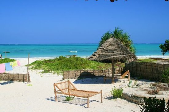 Paje, Tanzania: ZANZIBARBlick aus unserem Guesthouse